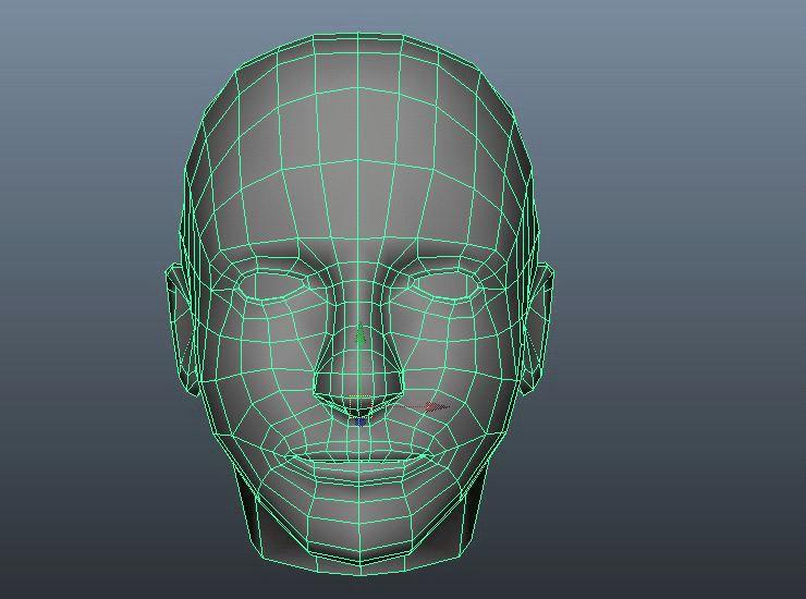 face-model